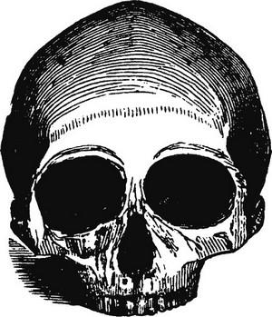 Философия смерти